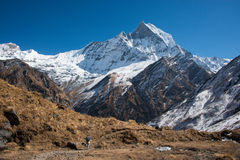 Machapuchare in Annapurna region, Nepal. The Fish tail or Machapuchare peak as seen from the Annapurna Base Camp Royalty Free Stock Photography