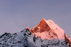 Machapuchare Fishtail mountain sunset panoramic view background royalty free stock images