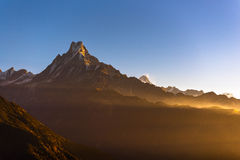 Machapuchare or Fishtail peak with sunrise sky background. Royalty Free Stock Photography