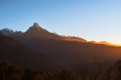 Machapuchare or Fishtail peak with sunrise sky. Royalty Free Stock Images