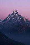 Machapuchare or Fishtail peak with sunset sky. Royalty Free Stock Image