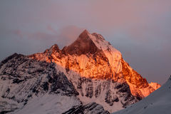 Machapuchare at sunset Royalty Free Stock Photos