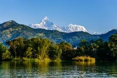 Machapucharen och Annapurnaen III sedda Pokhara, Nepal Royaltyfri Foto