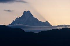 Machapuchre鱼盯梢山峰在日出,安纳布尔纳峰基地 免版税图库摄影