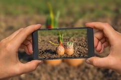 Machen des Fotos der glücklichen Eifamilie mit Handy Lizenzfreies Stockbild