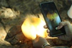 Machen eines Fotos des Herbstlaubs mit Smartphone stockbild