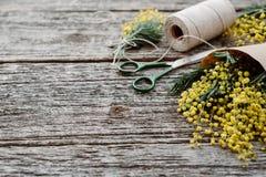 Machen Sie Blumenstrauß von der Mimose Verbände Schnur und Scheren auf rustikalem Holztisch Stockfotos
