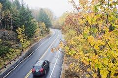 Machen Sie gebogene Straße im Acadia-Nationalpark nass Lizenzfreies Stockfoto