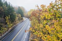 Machen Sie gebogene Straße im Acadia-Nationalpark nass Lizenzfreie Stockfotos