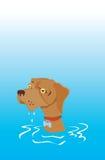 Machen Sie gegenübergestellten Hund mit traurigen Augen naß lizenzfreie abbildung