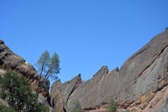 Machete Ridge del parque nacional de los pináculos con los árboles fotos de archivo libres de regalías