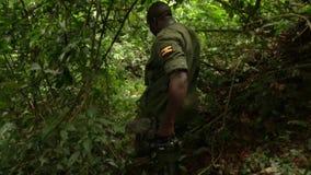 Machete use during Trek through thick African Jungle