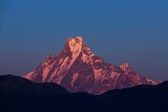 Machhapuchchhre mountain - Fish Tail in English is a mountain in stock image