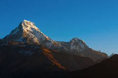 Machhapuchchhre mountain - Fish Tail in English is a mountain in stock photos