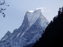 Machhapuchre or Fishtail in the morning Stock Images