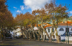Machico nära flygplats i madeiran, Portugal arkivbilder