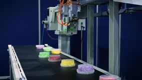 Machinalna ręka robot pracuje na konwejerze produkcja żywności Napady boksują z jedzeniem na konwejeru pasku zbiory