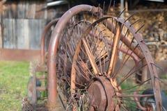 Machinalny świntuch Fotografia Stock