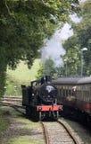 Machine à vapeur déménageant le long Photo libre de droits
