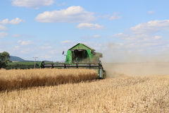 Machine cuts the field of oilseed rape Royalty Free Stock Image