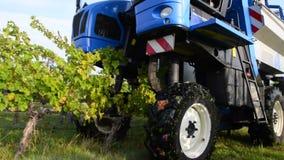 Machine de récolte de raisin, vignoble de Bordeaux banque de vidéos