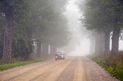 Machine in fog submerged gravel tree avenue. Stock Photo