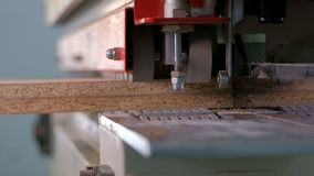 Machine for gluing edges on chipboard parts. Furniture manufacture. Shallow depth of field, selective focus. The mechanism of auto stock footage