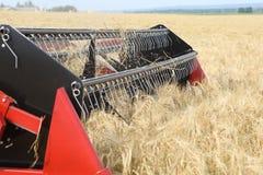 Machine harvesting Stock Photo