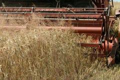 Machine harvesting. The corn field Royalty Free Stock Photos