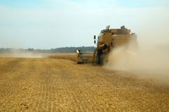 Machine harvesting the corn field Royalty Free Stock Photos