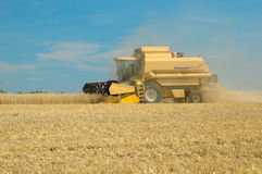 Machine harvesting the corn field Royalty Free Stock Photo
