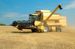 Machine harvesting the corn field Royalty Free Stock Image