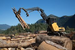 Machine harvesting wood scenic landscape blue sky. Heavy duty machine industrial forestry logger mountain landscape sunny day royalty free stock images