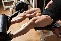 Machine leg extensions. Detail of a bodybuilder hard training in the gym: machine leg extensions Royalty Free Stock Photo