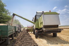 Machine loading seeds in to tractor trailer Royalty Free Stock Photography