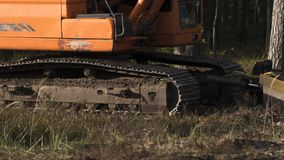 Machine on the logging site stock image