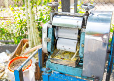 Machine for make a fresh cane juice with  sugar cane press rolle Royalty Free Stock Image