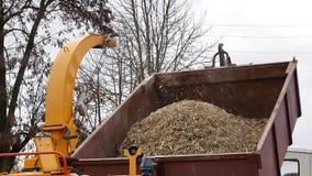 Machine pour les arbres de meulage dans des déchets de bois banque de vidéos