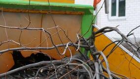 Machine pour les arbres de meulage dans des d?chets de bois clips vidéos