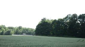 Machine spray fertilize wheat crop plant field near forest stock video footage