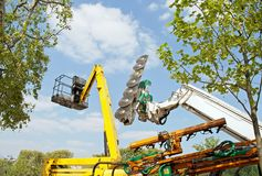 Machine to cut trees and nacelle, equipment for urban gardening Royalty Free Stock Photos