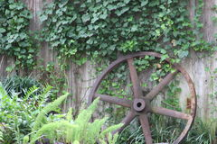 Machine Wheel in Gruene Texas Royalty Free Stock Photo