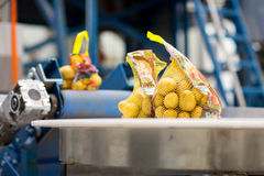 Machinery in fruit and vegetable wholesale royalty free stock image