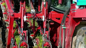 Machinery specialized for harvest carrots stock footage