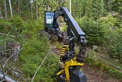 Machines de forêt Photographie stock libre de droits