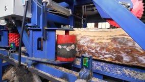 Machines de travail du bois à la scierie banque de vidéos