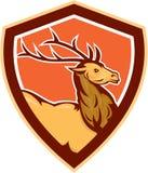Macho Buck Head Shield Retro de los ciervos ilustración del vector