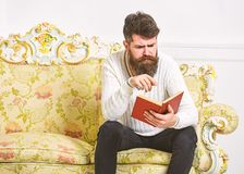 Macho on concentrated face reading book. Scandalous bestseller concept. Guy reading book with attention. Man with beard. And mustache sits on baroque style sofa royalty free stock photos