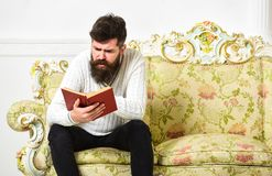 Macho on concentrated face reading book. Scandalous bestseller concept. Man with beard and mustache sits on baroque. Style sofa, holds book, white wall royalty free stock photo