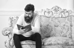 Macho on concentrated face reading book. Scandalous bestseller concept. Man with beard and mustache sits on baroque. Style sofa, holds book, white wall stock photos